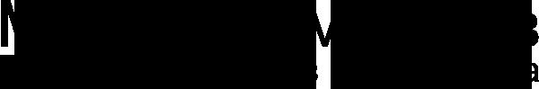 logo msmirnov.pro